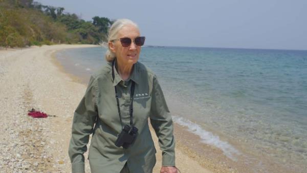 Jane Goodallová: Naděje