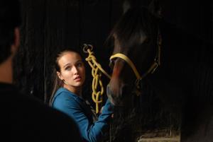 Znamení koně