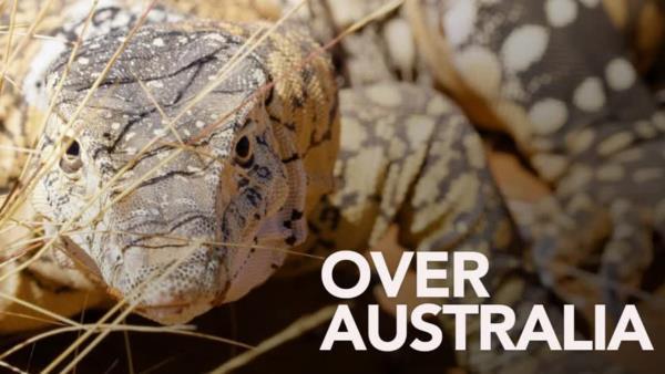 napric-australii