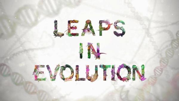 leaps-in-evolution